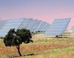 Gladstone Solar Farm - Acciona