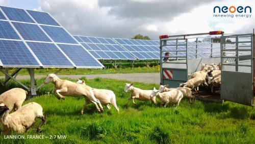 Numurkah Solar Farm Neoen