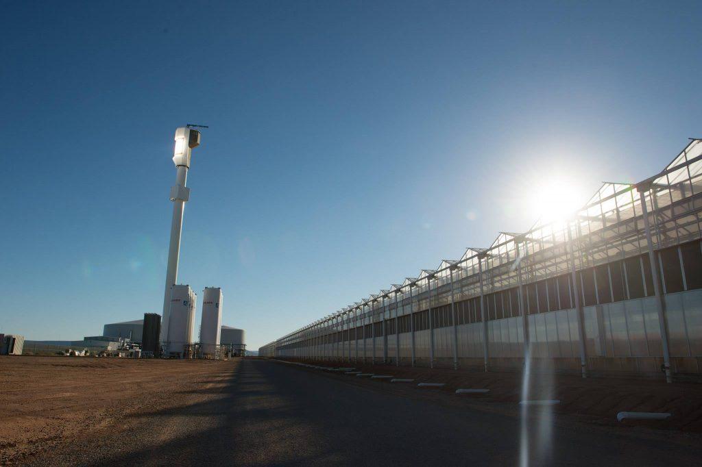 Sundrop Farms Solar Greenhouse